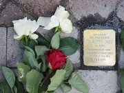 Stolperstein Dr. Albert David